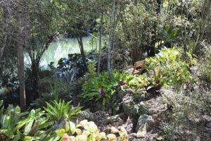Anne McCracken spiritual director reflection spot